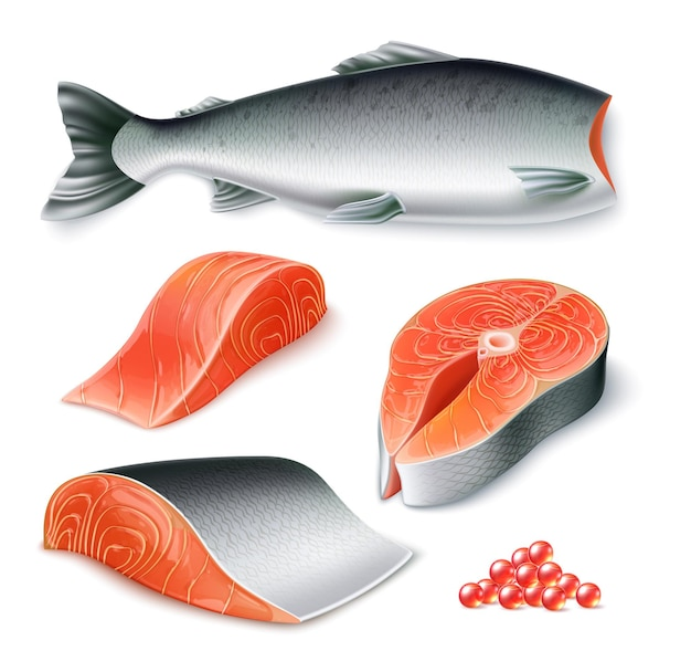 Vector realistic raw salmon fish set whole fish peeled fillet steak and caviar for restaurant menu