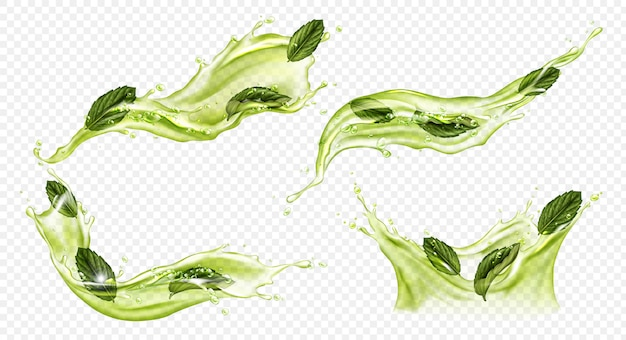 緑茶や抹茶のベクトル現実的なスプラッシュ