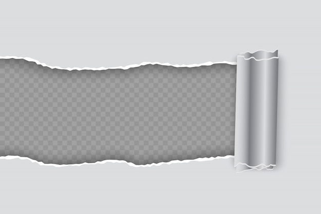 투명 배경에 롤 가장자리 벡터 현실적인 찢어진 종이