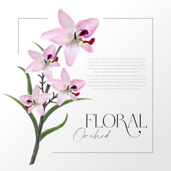 Vector realistic water color illustration of pink orchid flowers