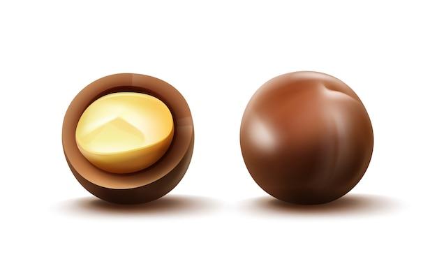 Vettore realistico intero e tagliare le noci di macadamia con guscio vicino vista laterale isolata su sfondo bianco