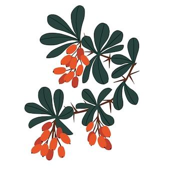 ベクトル赤いベリー果樹と葉のイラストデジタルアートワーク