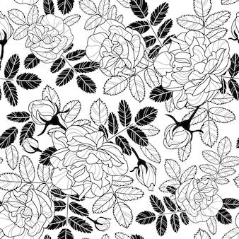 白いバラとベクトルの繰り返しパターン