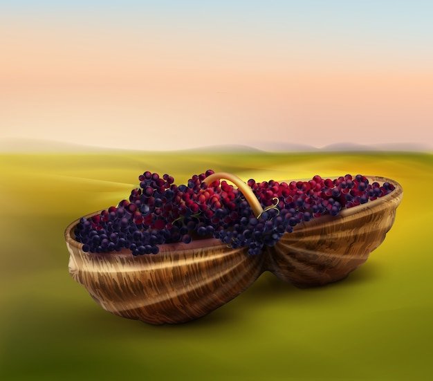 Vector ripe fresh grapes in wicker basket on background of sunset in valley