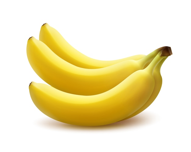 Vector ripe yellow banana bunch isolated on white background