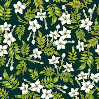 Vector seamless floral pattern with jasmine flowers.