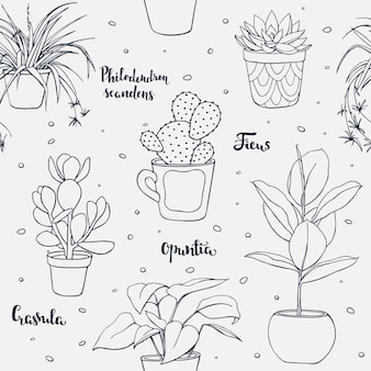 Vector seamless home plants pattern