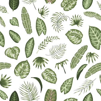Vector seamless pattern of green tropical leaves on white