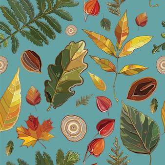 秋のセットとシームレスなパターンをベクトルの葉、ナッツ、木。 thujaの背景。アスペン;サイサリス;アルダー;エルム;柳;もみじ;オーク;ポテンティラ。