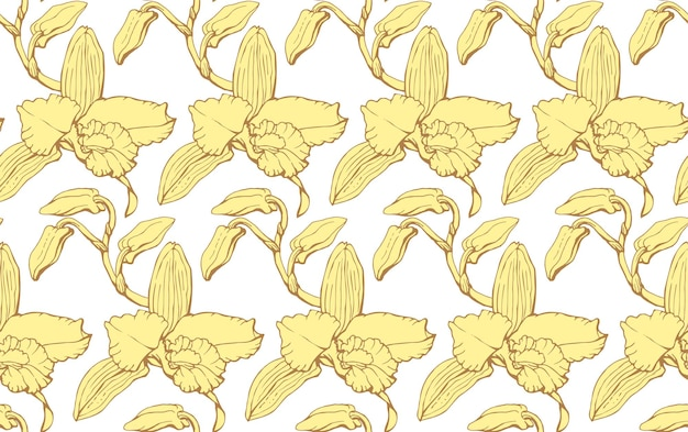 Vector seamless pattern with dendrobium orchid flowers endless texture for your design