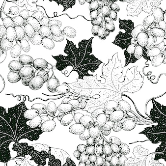 Vector seamless pattern with grape. can be use for background, design, invitation, banner, packaging. vintage hand drawn illustration
