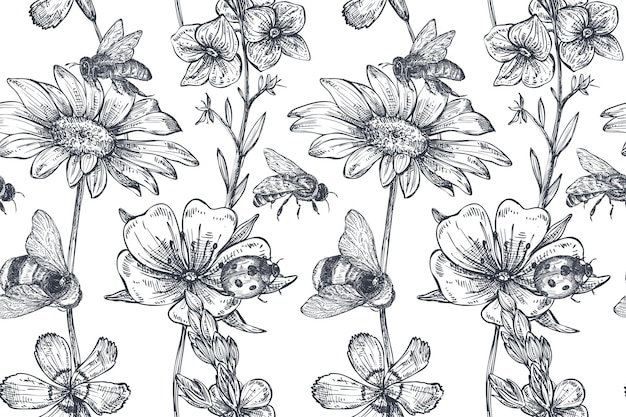 Vector seamless pattern with hand drawn chamomile, wildflowers, herbs, bee. monochrome endless illustration in sketch style.