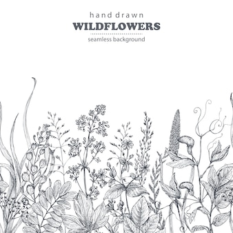 Vector seamless pattern with hand drawn herbs and wildflowers on white background