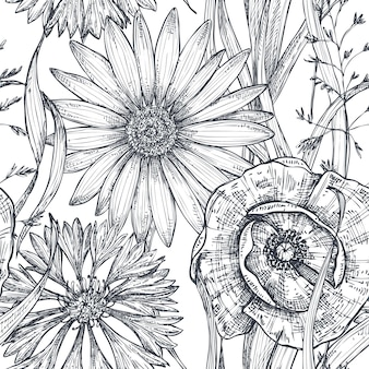 Vector seamless pattern with hand drawn poppy, cornflower and chamomile on white background
