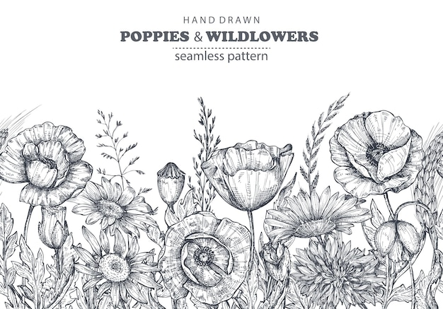 Vector seamless pattern with hand drawn poppy and other flowers and plants on white background