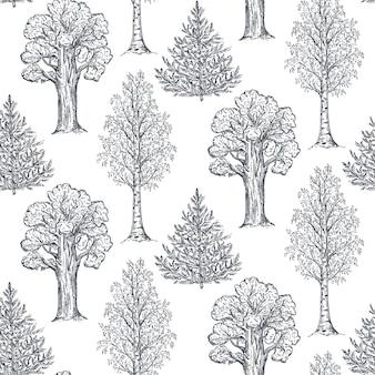 スケッチスタイルの手描きの木とシームレスなパターンをベクトルします。モミ白樺オーク