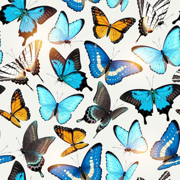 높은 상세한 열대 나비와 벡터 원활한 패턴