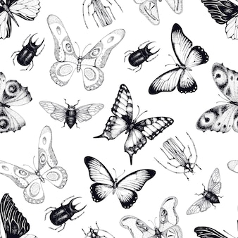 Vector seamless pattern with insects and butterflies. entomological background. hand drawn vintage illustration.