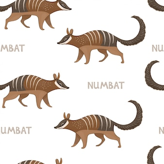 Vector seamless pattern with numbats. colored