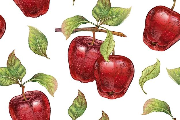 Вектор бесшовный образец с фруктами красных яблок на белом фоне