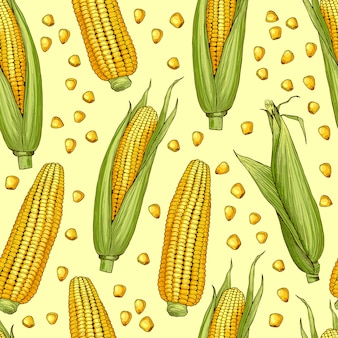 Vector seamless patterns with illustration of corn. vegetable pattern with corncob