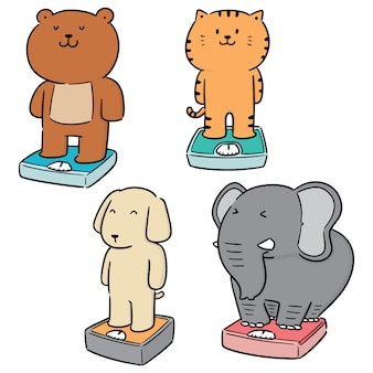 Vector set of animal on weighing machine