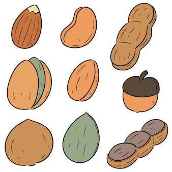 Vector set of beans and nuts