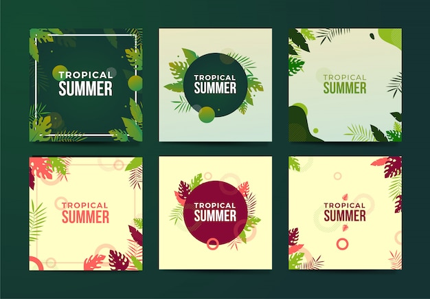 Vector set of beautiful summer posters and banners with foliage