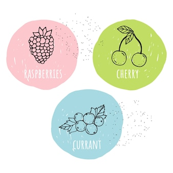 Vector set of berries with names. the cartoon style.