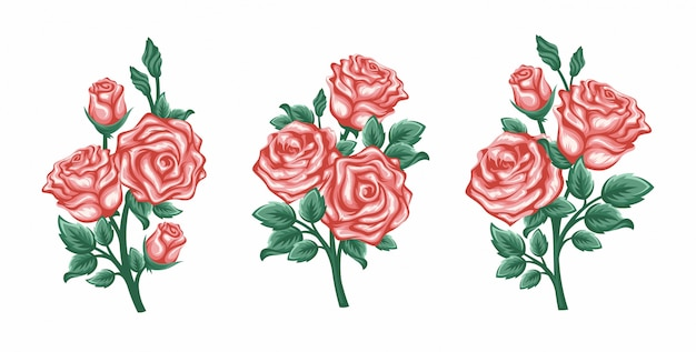 Vector set of branches roses isolated on a white background.