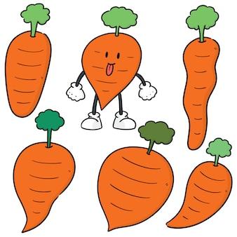 Vector set of carrot
