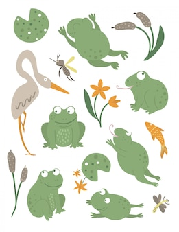 Vector set of cartoon style flat funny frogs in different poses with waterlily, dragonfly clipart. cute illustration of woodland swamp animals