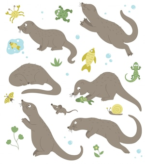 Vector set of cartoon style flat funny otters in different poses with frog, crab, fish, lizard clip art. cute illustration of woodland animals.