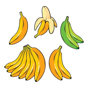 Vector set of cartoon yellow bananas overripe banana single banana peeled banana bunch