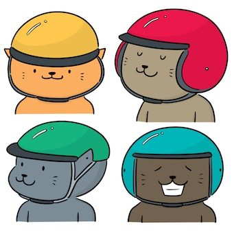 Vector set of cat wearing helmet
