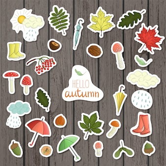 Vector set of colored autumn stickers on shabby wooden table.