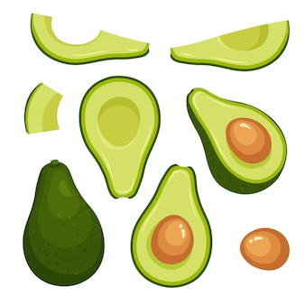 Vector set of colorful half, slice and whole of fresh avocado. vegan food vector icons in a trendy cartoon style. healthy food concept.