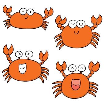Vector set of crab