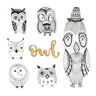 Vector set of cute doodle owls. birds isolated collection for kids or adult coloring book pages