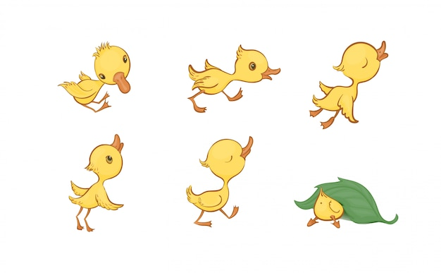 Vector set of cute funny yellow cartoon ducklings