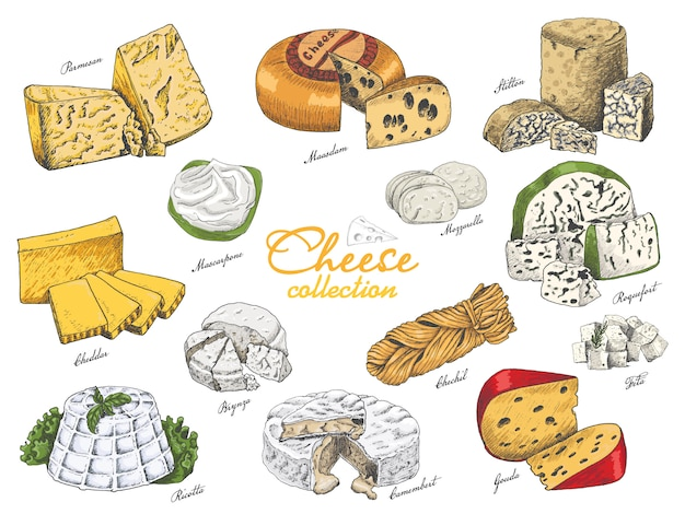 Vector set of different color cheeses