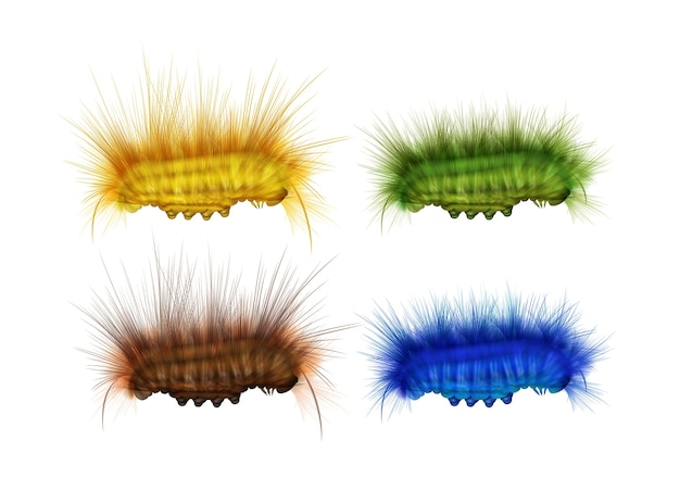 Insieme di vettore di diversi colorati bruchi pelosi verde, giallo, marrone, blu vista laterale isolato su priorità bassa bianca