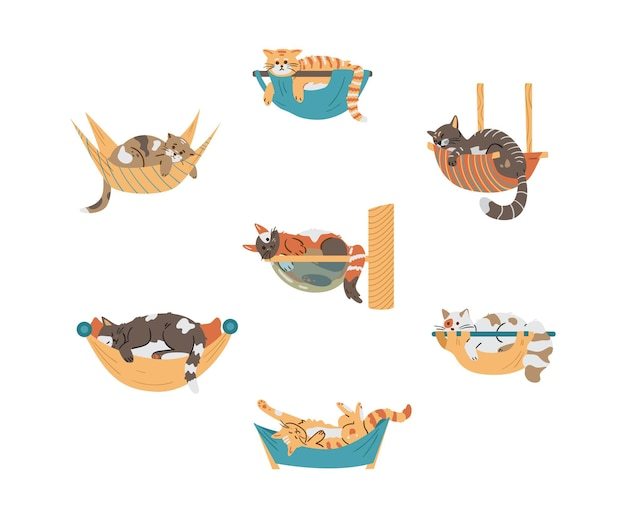 Vector set of different cute cats relaxing in hammocks. isolated on white.