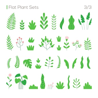 Vector set of different leaves and plants in a flat style