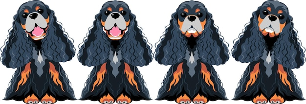 Vector set dogs american cocker spaniel black and gold sitting icon flat design