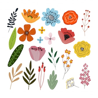 Vector set of floral elements with hand drawn flowers