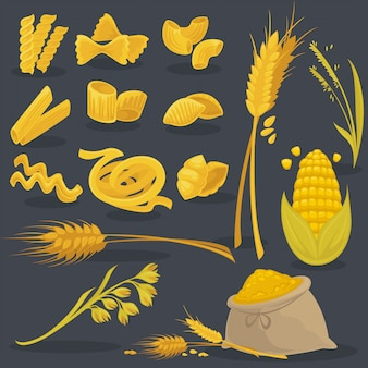 ベクトルは、小麦の食べ物を設定します。イタリア料理。