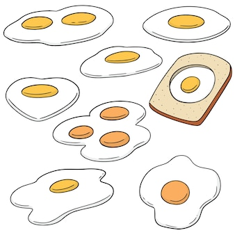 Vector set of fried egg