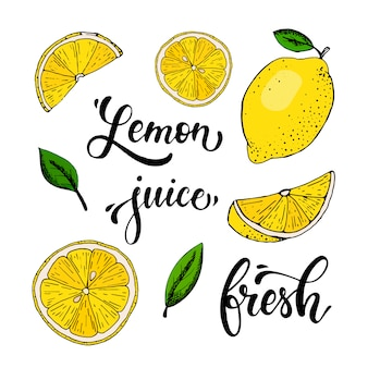 Vector set of hand drawn lemons, leaves and quotes
