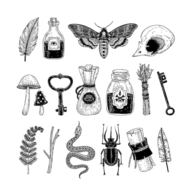 vector set of hand drawn magical occult elements in graphic style.
